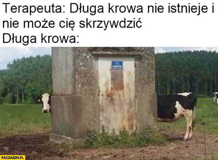 Terapeuta: długa krowa nie istnieje i nie może Cię skrzywdzić