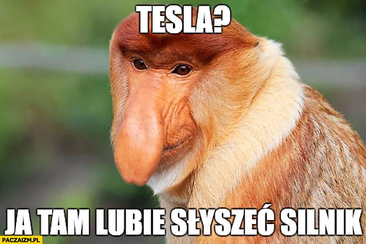 Tesla ja tam lubię słyszeć silnik typowy Polak nosacz