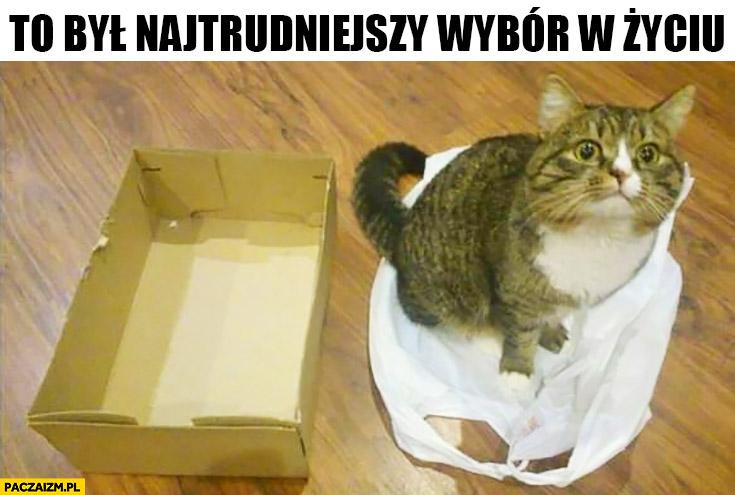 To był najtrudniejszy wybór w życiu kot pudełko torebka foliowa