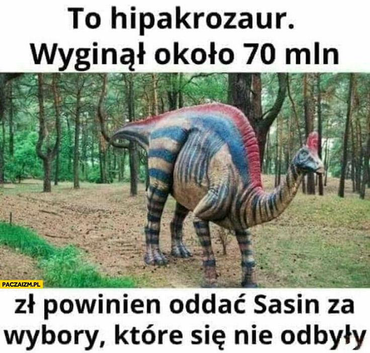 To hipakrozaur ,wyginął około 70 mln zł powinien oddać Sasin za wybory które się nie odbyły