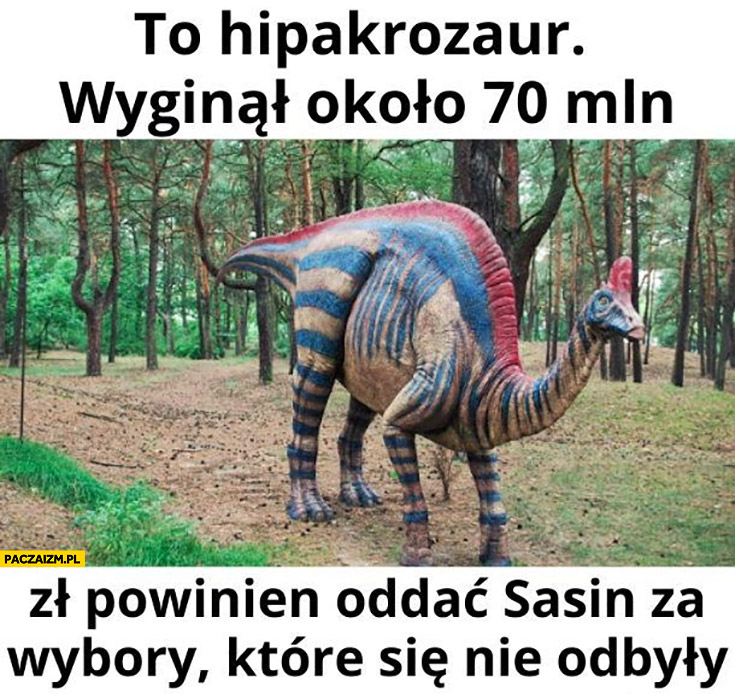 To hipakrozaur wyginał około 70 mln zł powinien oddać Sasin za wybory które się nie odbyły