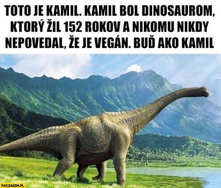 To jest Kamil, jest dinozaurem który żył 152 lata i nigdy nikomu nie powiedział, że jest weganinem bądź jak Kamil