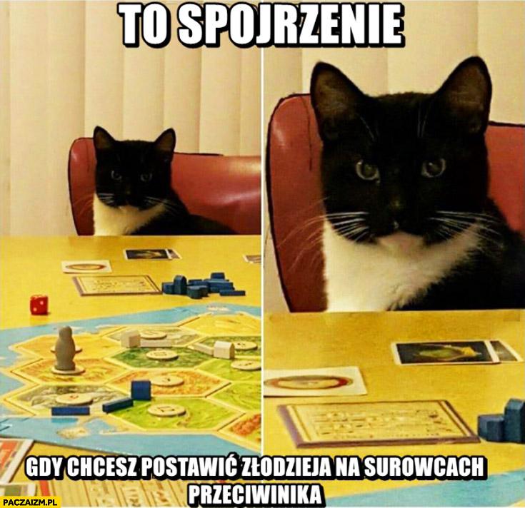 To spojrzenie gdy chcesz postawić złodzieja na surowcach przeciwnika kot Osadnicy z Catanu