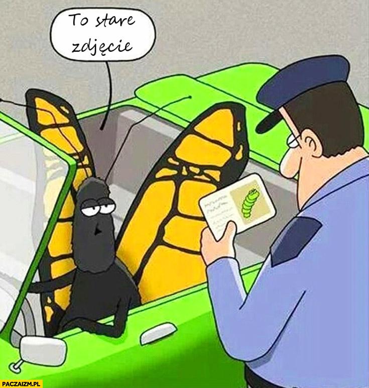 To stare zdjęcie motyl kontrola dokumentów przez policjanta