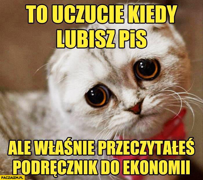 To uczucie kiedy lubisz PiS ale właśnie przeczytałeś podręcznik do ekonomii smutny kot