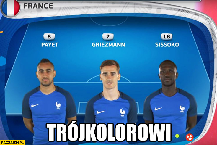 Trójkolorowi reprezentacja Francji Euro 2016 różne kolory skóry