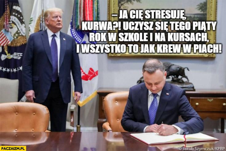 Trump do Dudy nauka angielskiego dzień świra ja Cię stresuję? wszystko jak krew w piach wizyta w USA