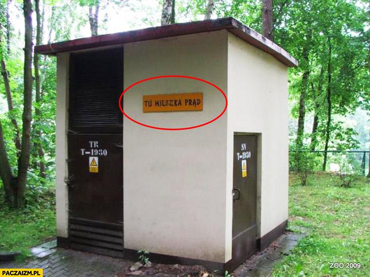 Tu mieszka prąd budka ZOO w Gdańsku
