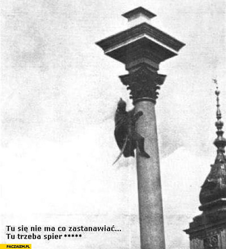 Tu się nie ma co zastanawiać tu trzeba uciekać Zygmunt trzeci Waza schodzi z kolumny