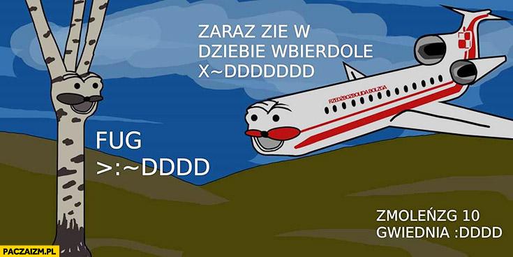 Tupolew Smoleńsk brzoza fug gondola mem