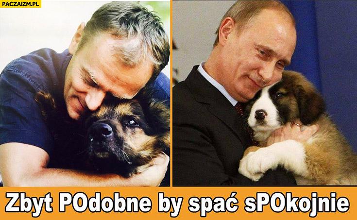 Tusk Putin przytula psa zbyt podobne by spać spokojnie