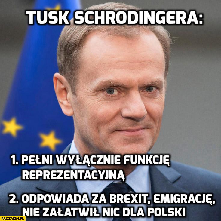 Tusk Schrodingera pełni wyłącznie funkcję reprezentacyjną, odpowiada za Brexit, emigrację, nie załatwił nic dla Polski