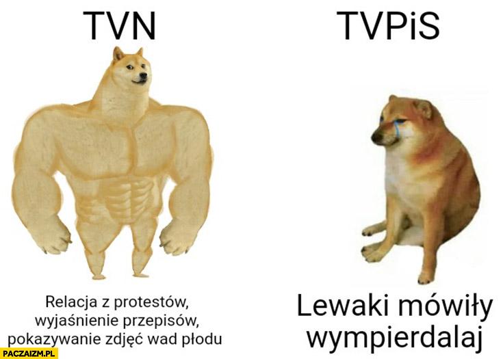 TVN: relacja z protestów wyjaśnienie przepisów, tvpis: lewaki mówili wypierdzielaj pies doge