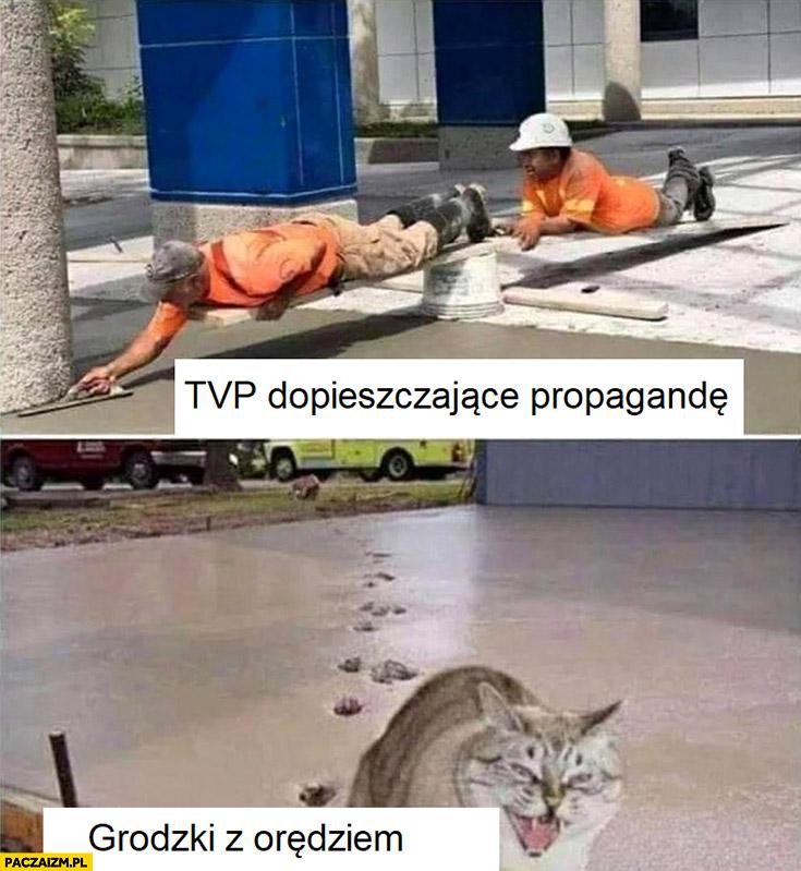 TVP dopieszczające propagandę vs Grodzki z orędziem kot murarze