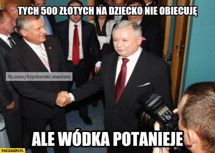 Tych 500 złotych na dziecko nie obiecuję ale wódka potanieje Kaczyński