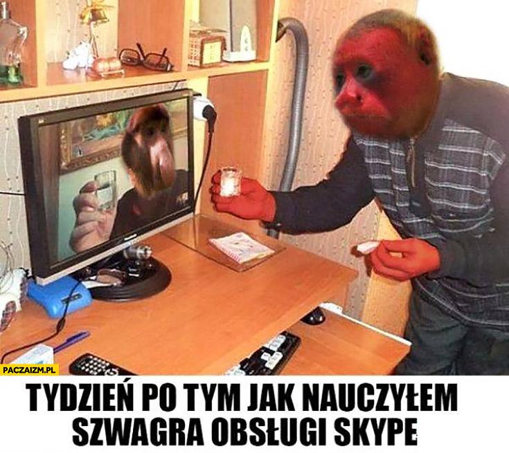 Tydzień po tym jak nauczyłem szwagra obsługi Skype pije wódkę kielona typowy Polak nosacz małpa