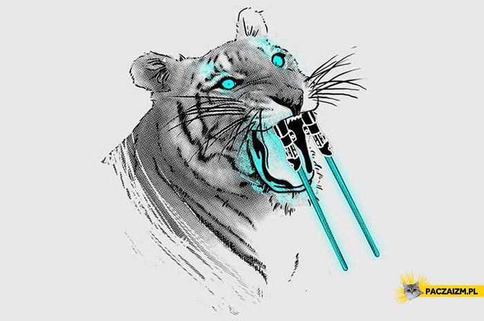Tygrys miecze świetlne