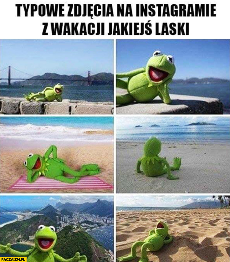 Typowe zdjęcia na instagramie z wakacji jakiejś laski Kermit