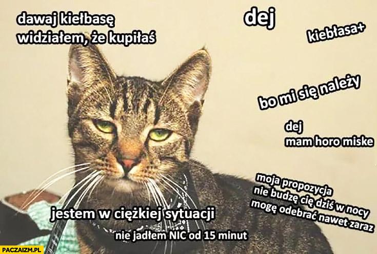 Typowy kot dawaj kiełbasę bo mi się należy jestem w ciężkiej sytuacji nie jadłem nic od 15 minut