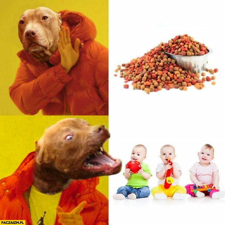 Typowy pies pitbull karma nie chce, woli zagryźć dzieci dziecko Drake