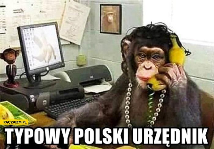 Typowy polski urzędnik