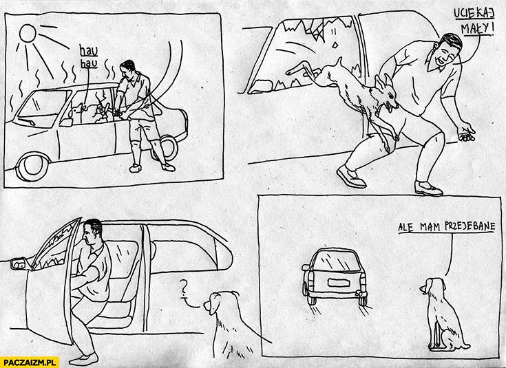Uciekaj mały, facet uwalnia psa i ucieka autem, ale mam przerąbane
