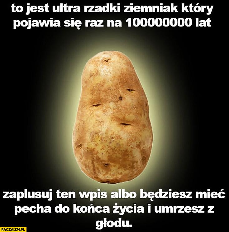 Ultra rzadki ziemniak pojawia się raz na milion lat zaplusuj albo będziesz mieć pecha do końca życia i umrzesz z głodu