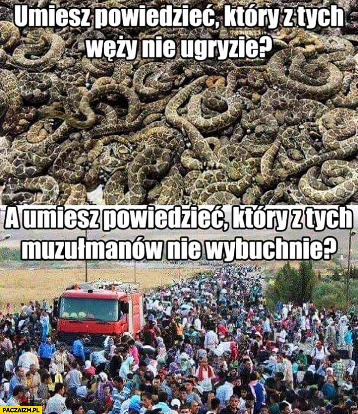 Umiesz powiedzieć który z tych węży nie ugryzie? A umiesz powiedzieć który z tych muzułmanów nie wybuchnie?