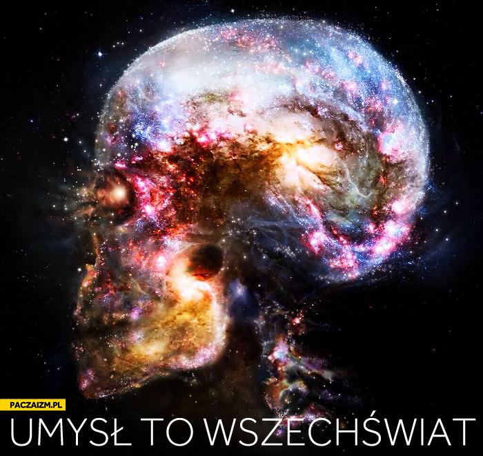 Umysł to wszechświat