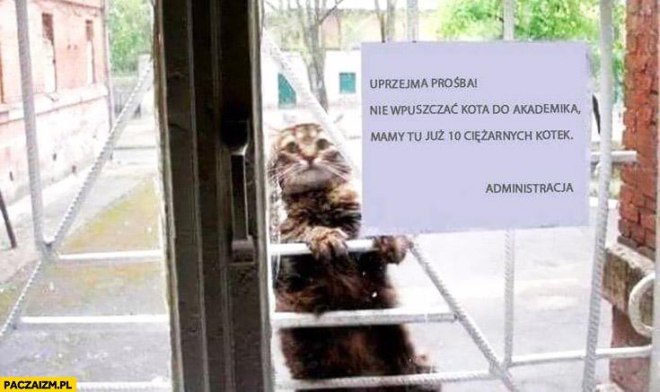 Uprzejma prośba nie wpuszczać kota do akademika mamy tu już 10 ciężarnych kotek kartka ogłoszenie