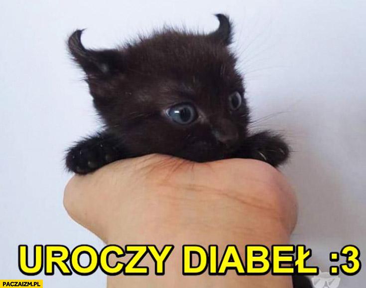 Uroczy diabeł kotek