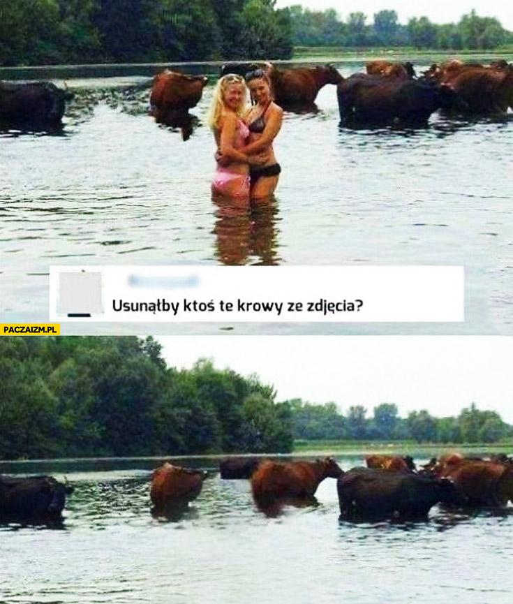 Usunąłby ktoś te krowy ze zdjęcia