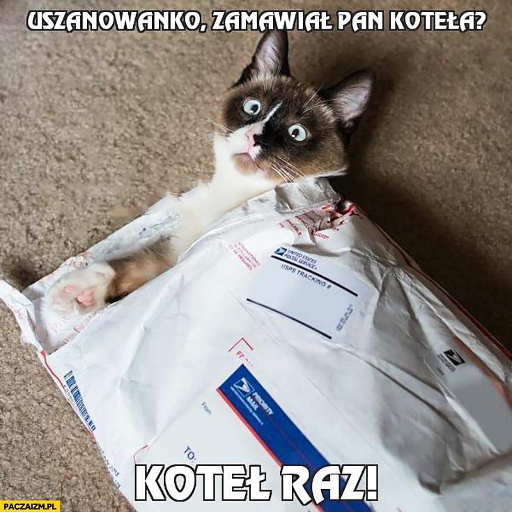 Uszanowanko zamawiał Pan koteła przesyłka koteł raz