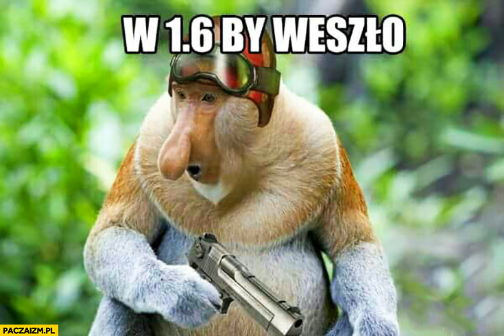 W 1.6 by weszło Counter-Strike typowy Polak nosacz