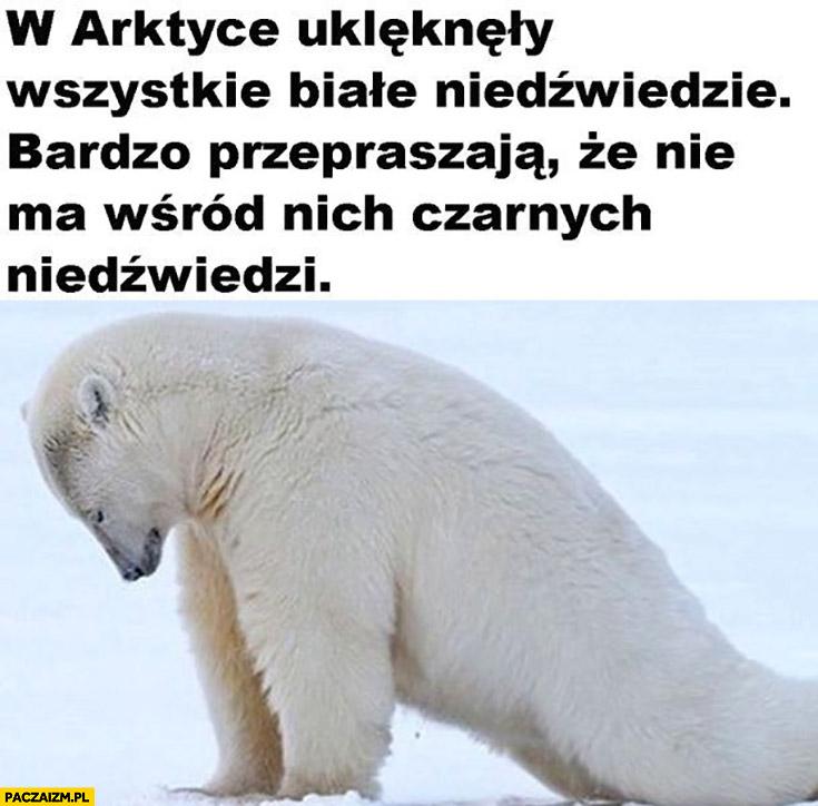 W Arktyce uklękły wszystkie białe niedźwiedzie bardzo przepraszają, że nie ma wśród nich czarnych niedzwiedzi