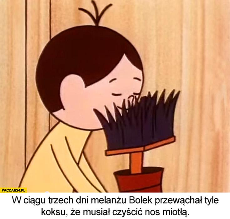 W ciągu trzech dni melanżu Bolek przewąchał tyle koksu że musiał czyścić nos miotłą