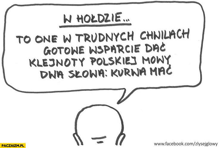 W hołdzie klejnoty polskiej mowy dwa słowa kurwa mać
