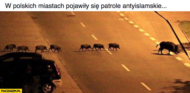 W polskich miastach pojawiły się patrole antyislamskie dziki