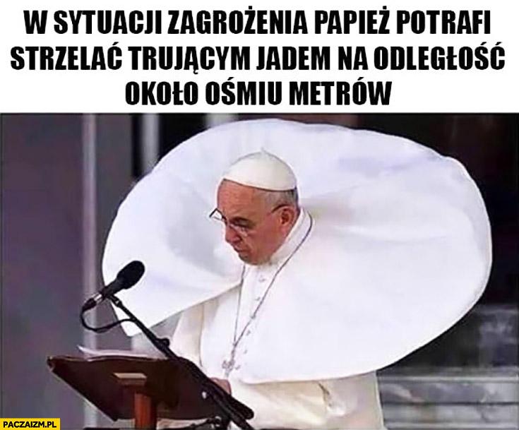 W sytuacji zagrożenia papież potrafi strzelać trującym jadem na odległość około ośmiu metrów Papież Franciszek