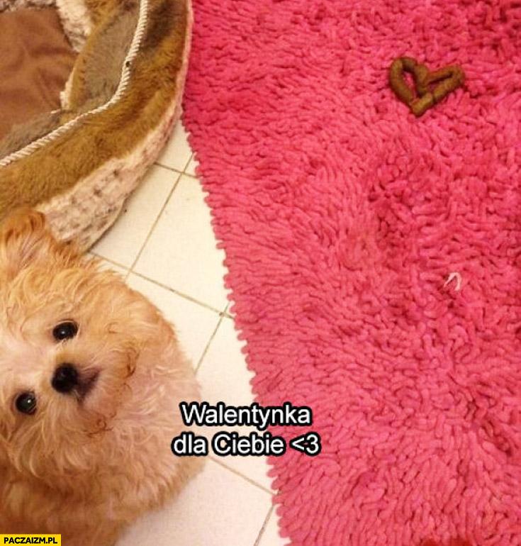 Walentynka dla Ciebie kupa psa