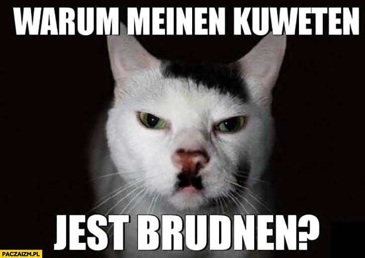 Warum mainen kuweten jest brudnen? Kot z wąsem jak hitler czemu moja kuweta jest brudna