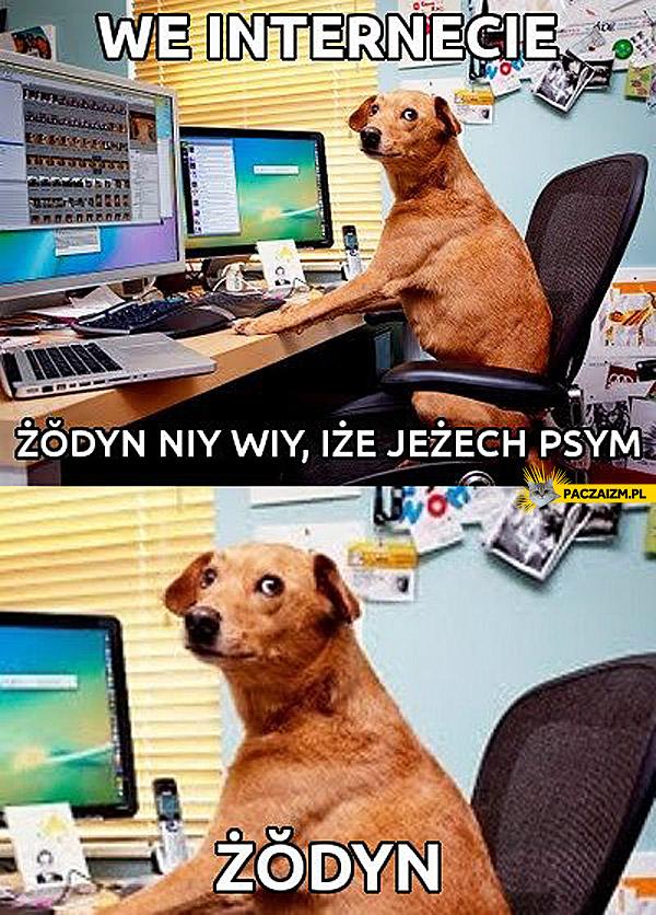 We internecie żodyn niy wiy iże jeżech psym