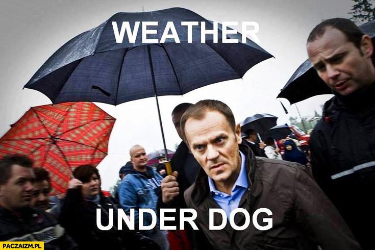 Weather under dog pogoda pod psem. Angielski z Tuskiem