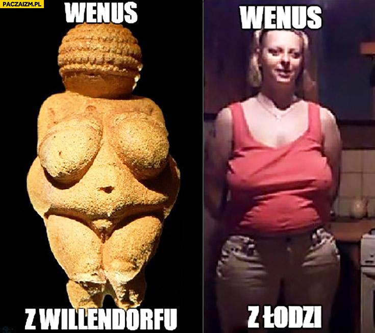 Wenus z Willendorfu, Wenus z Łodzi Kobra