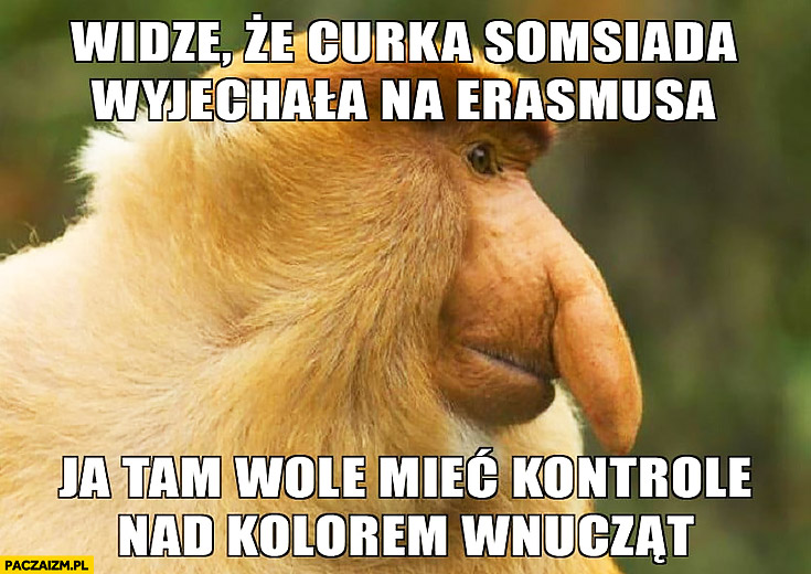Widzę, że córka sąsiada wyjechała na Erasmusa, ja tam wolę mieć kontrole nad kolorem wnucząt typowy Polak nosacz małpa