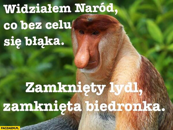 Widziałem naród co bez celu się błąka zamknięty Lidl, zamknięta Biedronka typowy Polak nosacz małpa zakaz handlu w niedzielę