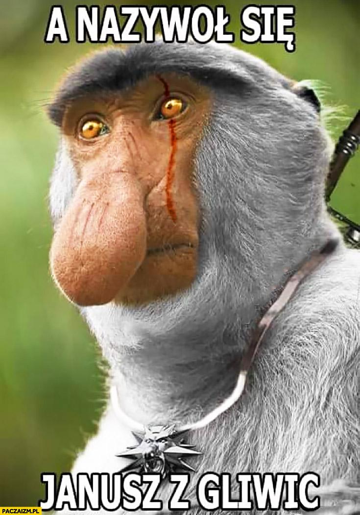 Wiedźmin a nazywał się Janusz z Gliwic typowy Polak nosacz małpa przeróbka