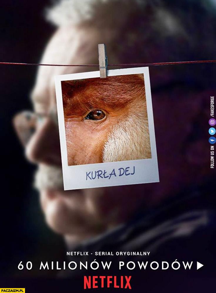 Wiedźmin Sapkowski kurła dej plakat typowy Polak nosacz małpa przeróbka