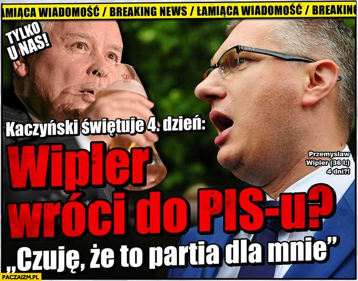 Wipler wróci do PiS Kaczyński świętuje czwarty dzień faktoid