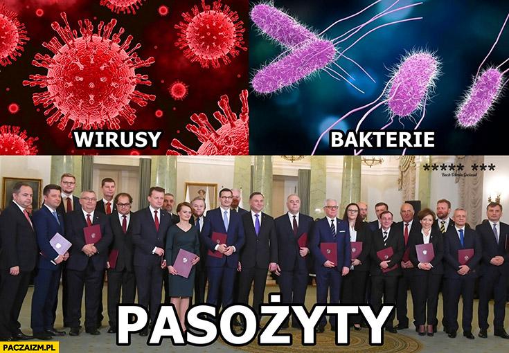 Wirusy, bakterie, pasożyty posłowie PiS prawo i sprawiedliwość